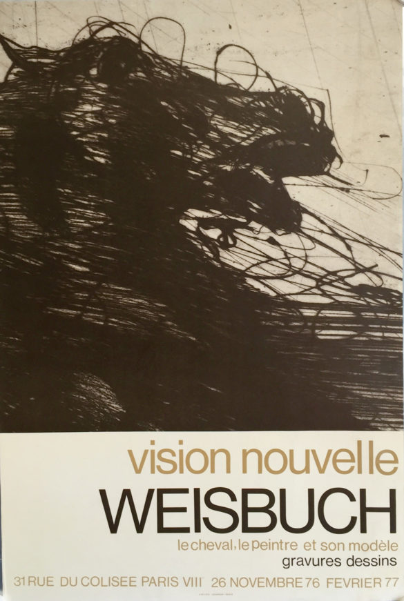 vision-nouvelle-Weisbuch